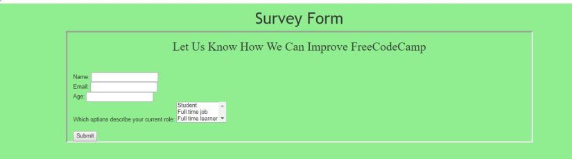 survey form